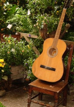 Guitar in the Garden